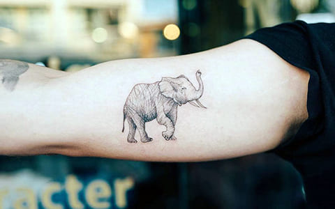 Татуировка слон на руке