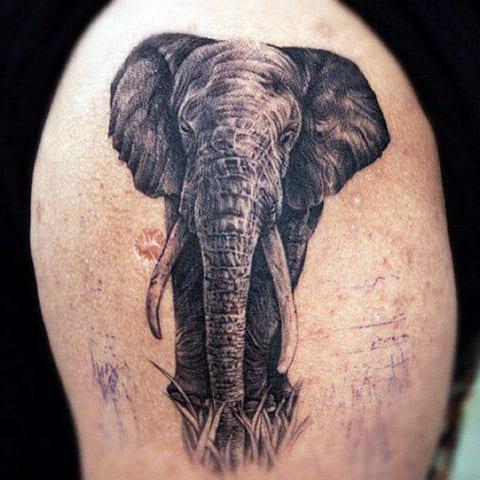 Тату со слоном