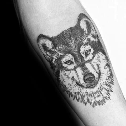 Татуировка хаски на предплечье