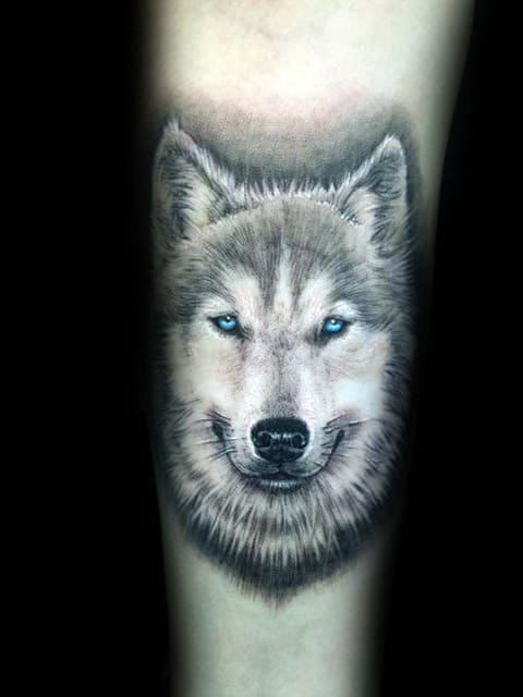 Татуировка хаски