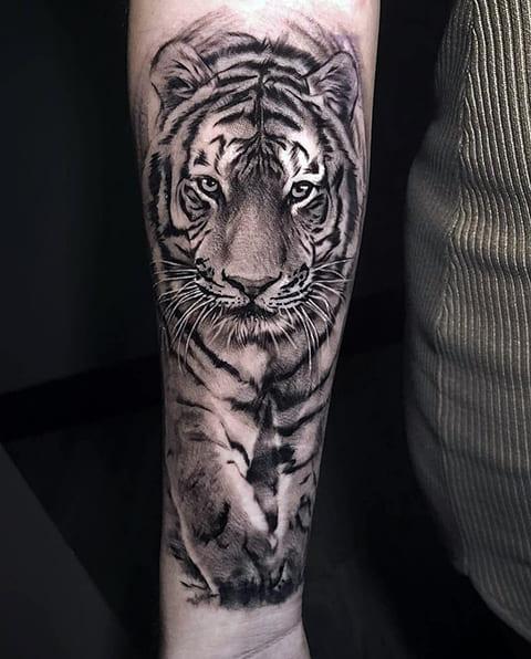 Тату тигр на руке