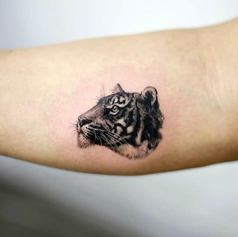 Тату голова тигра на руке