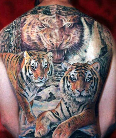 Татуировка с тиграми на спине