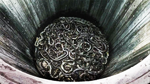 Яма со змеями