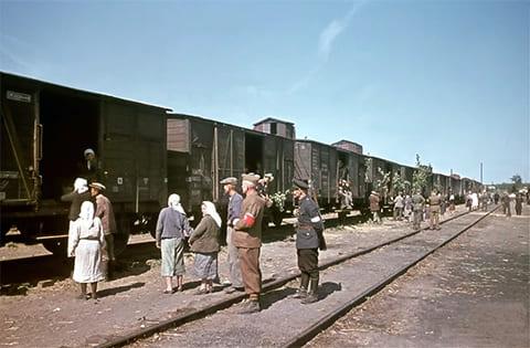 Железные дороги Советской Украины в период немецкой оккупации