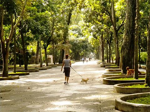 Парк Лос-Каобос в Каракасе