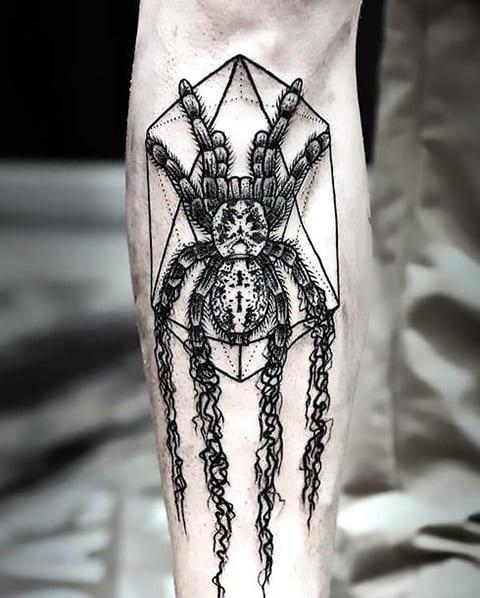 Тату тарантул в геометрии