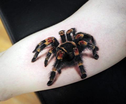Тату тарантул