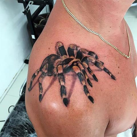 Тату тарантул на плече
