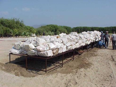 Лидер крупного наркокартеля задержан в Мексике
