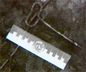 Нерсесян применила против Ряховского слезоточивый газ и попыталась ударить нападавшего шилом, но была обезоружена и заколота этим же самым шилом