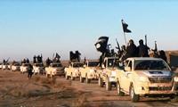 Воров в законе в Ираке приравняли к террористам