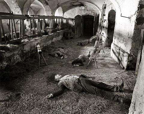 Убийство на ферме Хинтеркайфек