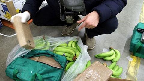 Конфискованный кокаин, спрятанный в коробках с бананами