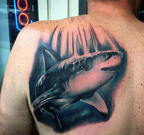 Тату акула на спине - фото