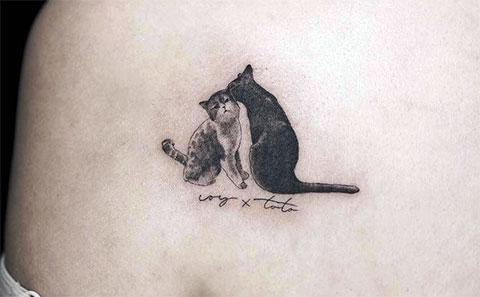 Тату кошки на лопатке для девушек