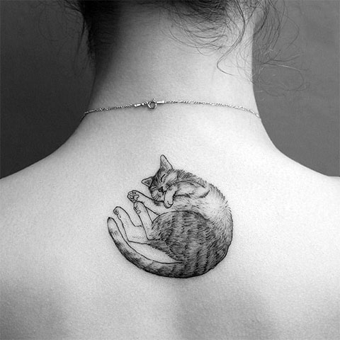 Тату кошки на спине для девушек